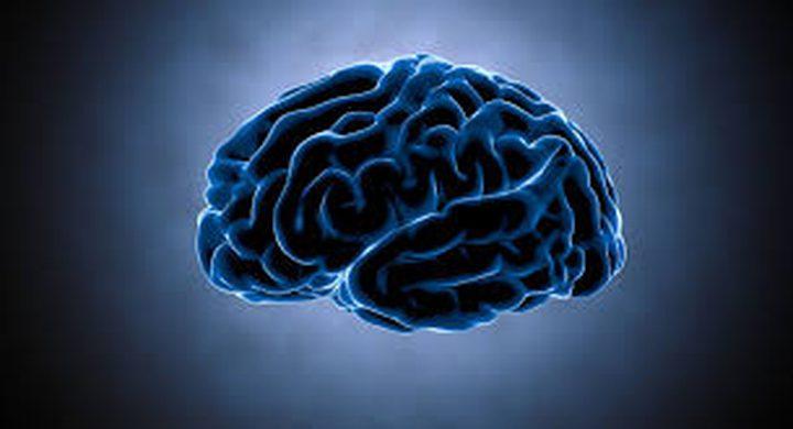 علماء يتحكمون بارادة الدماغ!
