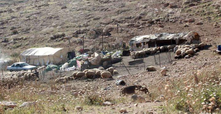 توزيع خزانات مياه وزراعة اشجار زيتون في خربة طانا