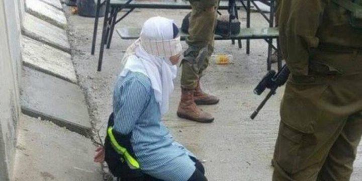نحو 350 طفلا بينهم 8 قاصرات يقبعون في سجون الاحتلال
