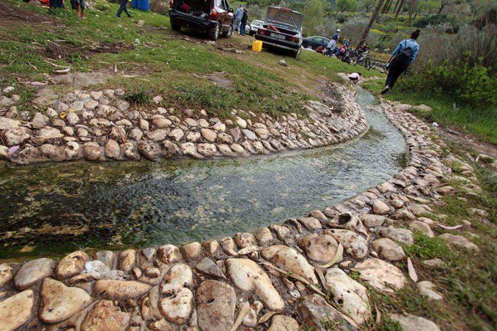قلقيلية: مسار بيئي سياحي في محمية واد قانا