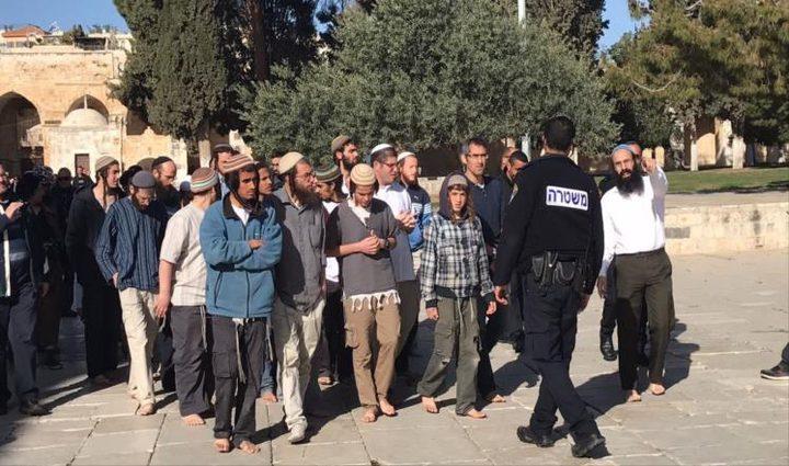 مركز القدس: اقتحامات المستوطنين للمسجد الأقصى سياسة ممنهجة