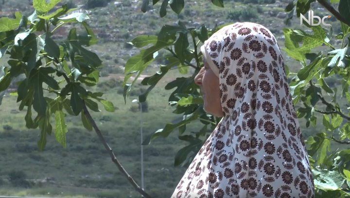 عائلة تتحدّى الاستيطان في عزبة أبو آدم (فيديو)