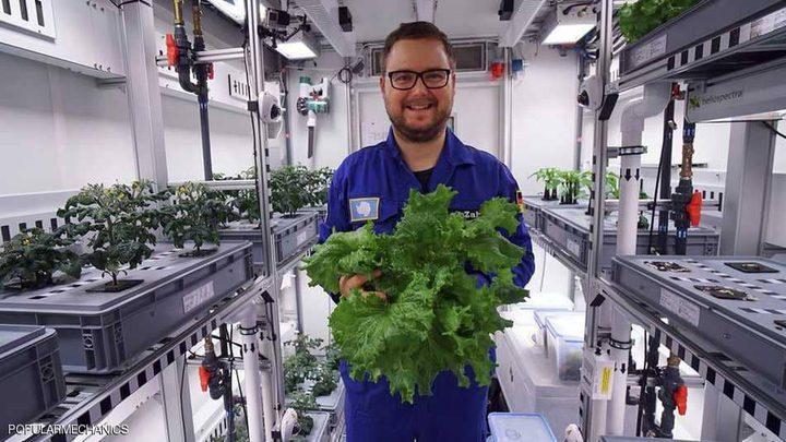 زراعة ناجحة لخضراوات بالقارة القطبية دون تربة!
