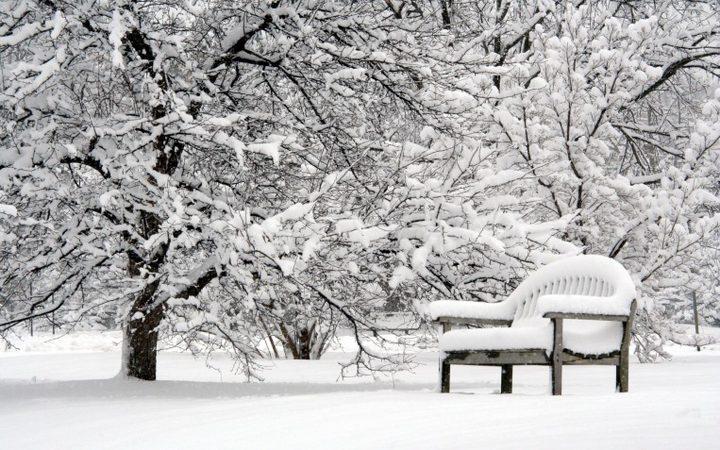 لماذا تؤثر العواصف الثلجية على صحة القلب ؟