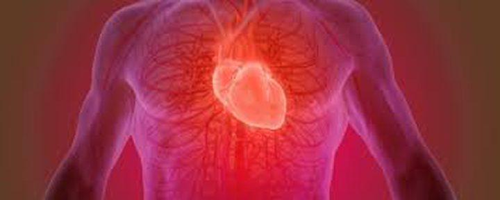 هل يوجد عدد محدد من نبضات القلب لدى البشر خلال حياتهم؟