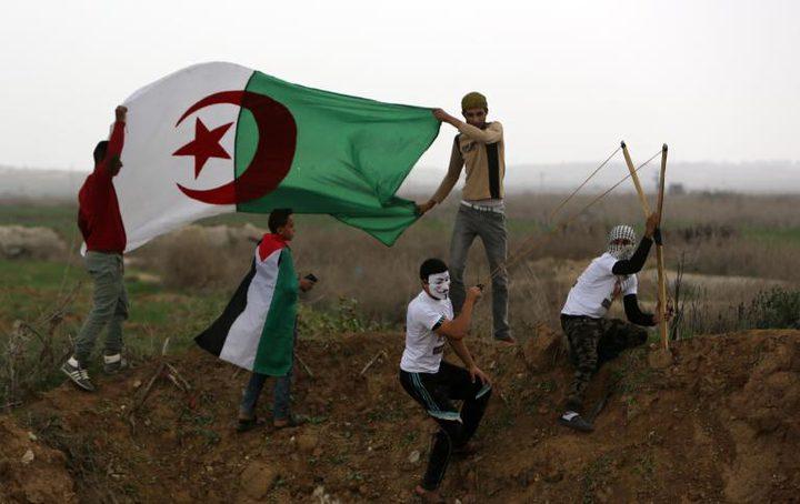 المُقلاع .. اليَدُ الفلسطينيّة المُقاوِمة !