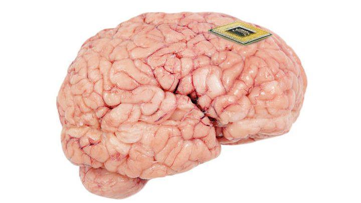 علماء يبتكرون أصغر محفز عصبي في العالم