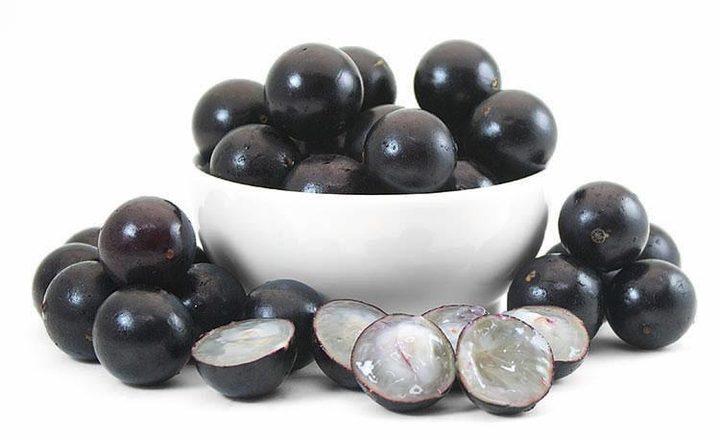 ما هي علاقة الفواكه السوداء بخسارة الوزن الزائد؟