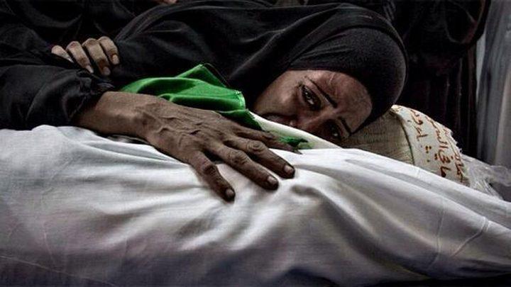 غزة.. الكف يلاطم المخرز