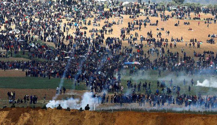 """""""الأونروا""""تؤيد اجراء تحقيق تحقيق دولي بجرائم الاحتلال"""