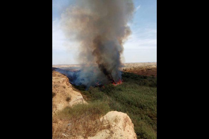 """بفعل الطائرات الورقية.. حريق كبير بحقول """"ناحال هبسور"""" شرقي خانيونس"""