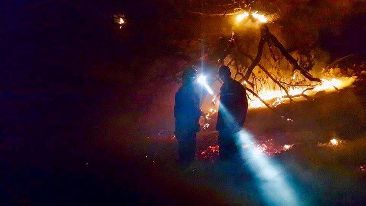 إطفائية نابلس: (300) حريق خلال ثلاثة أيَّام سببها استهتار المواطنين