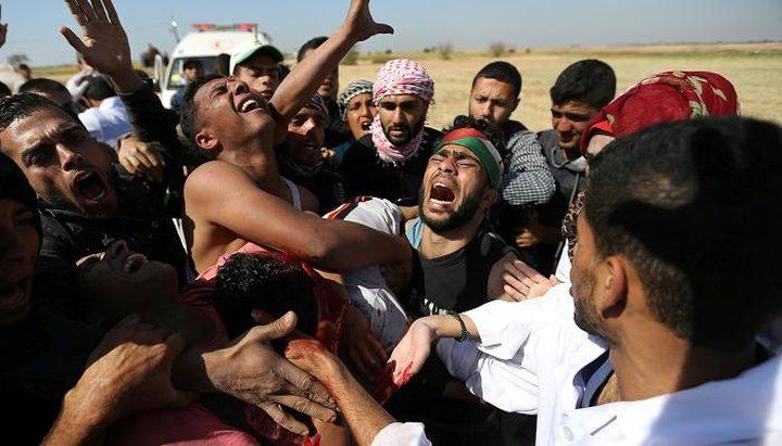 المنظمات الاهلية: مقياس جدية المجتمع الدولي بالزام اسرائيل بالقانون