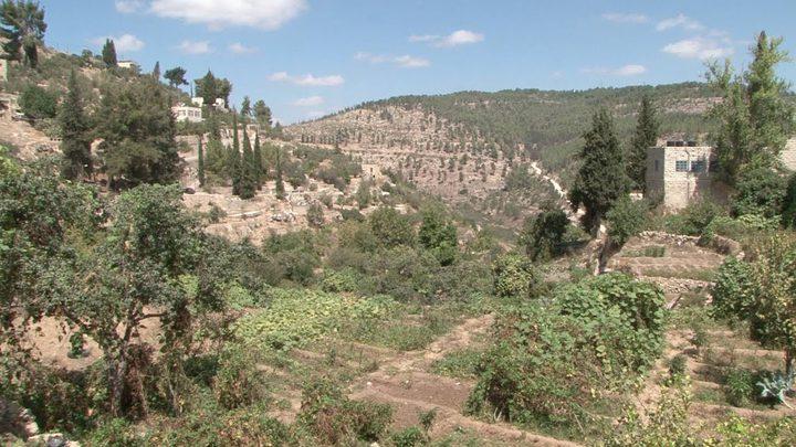 جودة البيئة: التنوع الحيوي في فلسطين يعاني من أخطار كبيرة أهمها الاحتلال