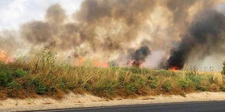 حريقان بمستوطنات غلاف غزة بفعل طائرات ورقية حارقة
