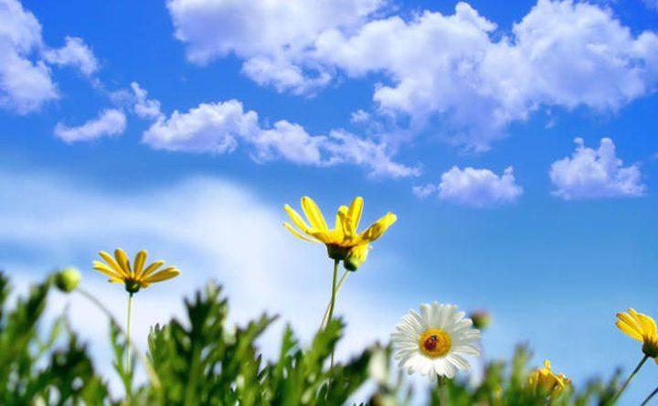 الطقس: درجات الحرارة أعلى من معدلها السنوي بحدود 6 درجات
