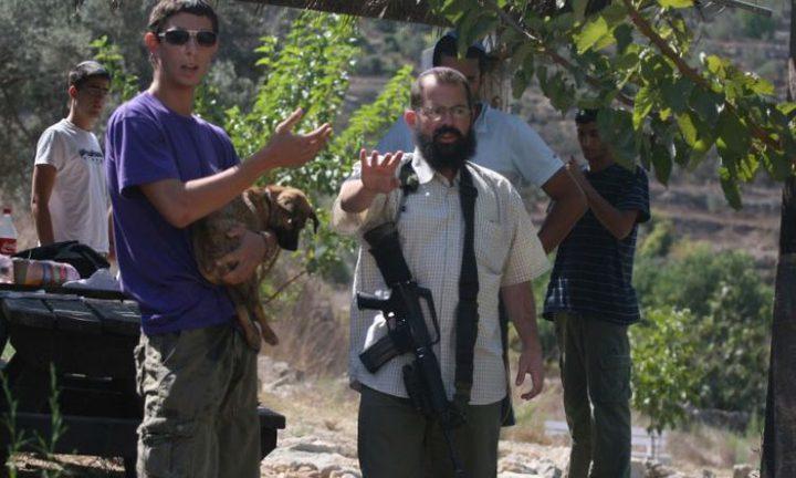 بيت لحم: مستوطنون يقطعون العشرات من الأشجار المثمرة