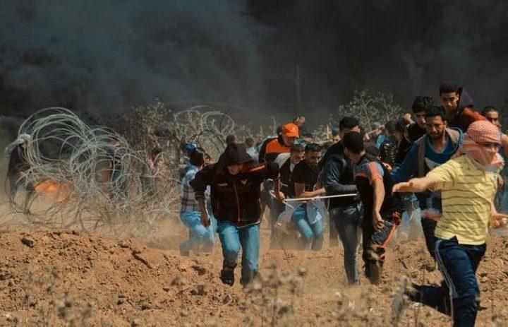 فيديو.. شبان يخترقون السياج ويحرقون موقعا للاحتلال