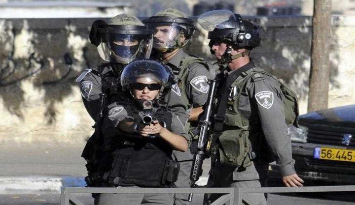 بالفيديو: عنصر من شرطة الاحتلال يصفع مواطنا في رهط وأردان يرد
