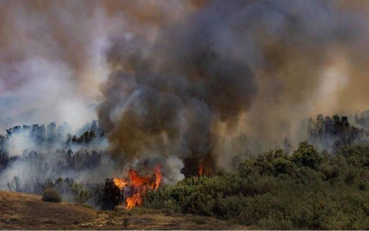 """غزة: طائرة ورقية حارقة تشعل حريقاً في """"ناحل عوز"""""""