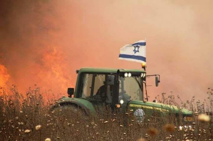 الإحتلال يزعم اندلاع حرائق في المزارع المحيطة بغزة بفعل طائرات ورقية