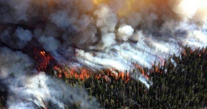 حرائق غابات قرب لوس أنجليس الأمريكية وإجلاء السكان