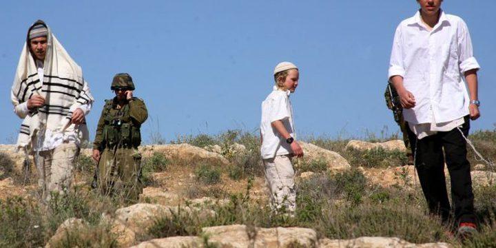 نابلس: مستوطنون يعيدون وضع بيوت متنقلة على أراضي المواطنين