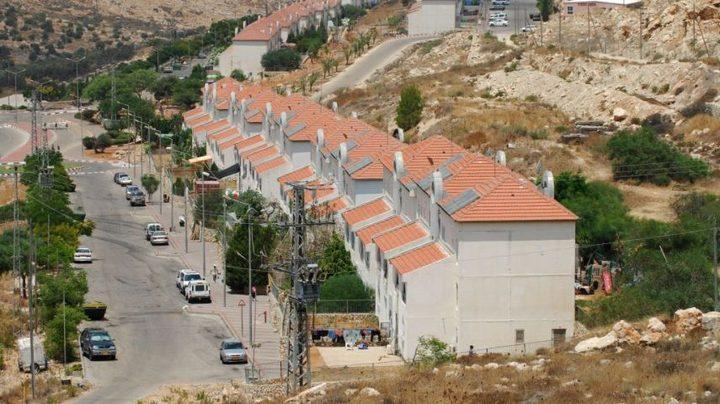 مستوطنون ينصبون بيوتًا متنقلة ببؤرة استيطانية مخلاة جنوب نابلس