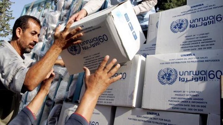 """""""الأونروا"""": 80 بالمائة من سكان غزة يعتمدون على المساعدة الإنسانية"""