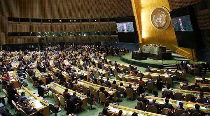 الأمم المتحدة تصوت على مشروع قرار خاص بفلسطين الأربعاء