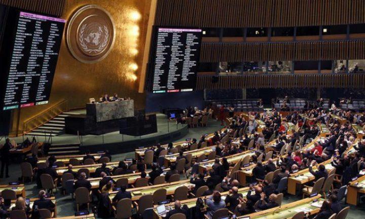 أبو هولي: تصويت الأمم المتحدة على قرار الحماية صفعة لأميركا وإسرائيل