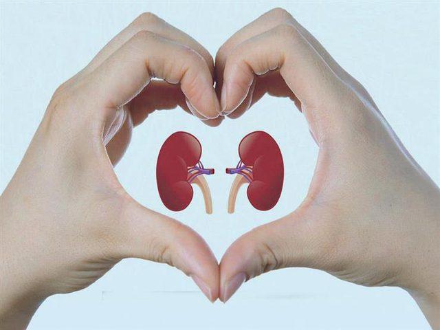 5 عادات خاطئة تضر بصحة الكلى