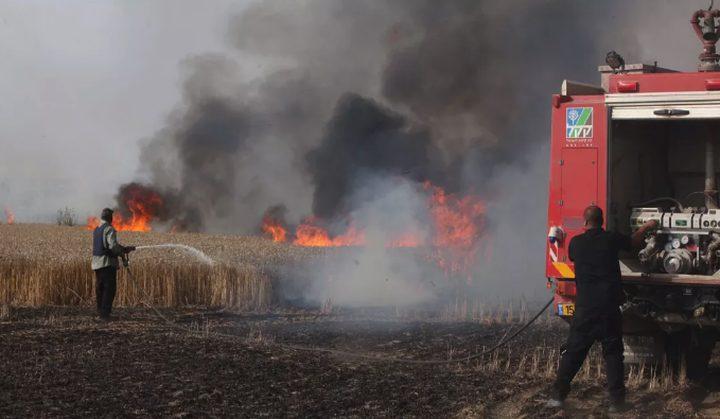 الاحتلال يزعم: اندلاع حرائق جنوب اسرائيل بسبب البالونات الحارقة التي تطلق من غزة