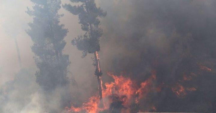مجلة امريكية: جمر الفحم سلاح غزة الجديد لحرق اسرائيل
