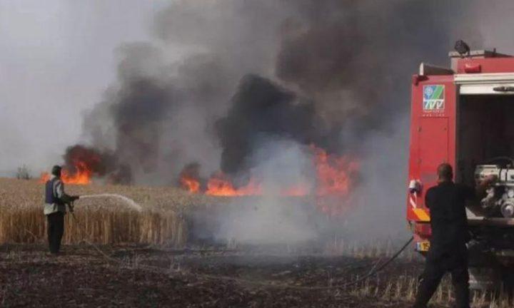 المستشار القانوني لحكومة الاحتلال يُشرّع اغتيال مطلقي الطائرات الورقية من غزة