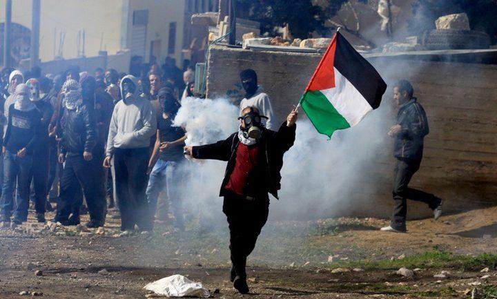 باحثة أميركية: الفلسطينيون يخوضون مقاومة يومية ذكية ضد الاحتلال