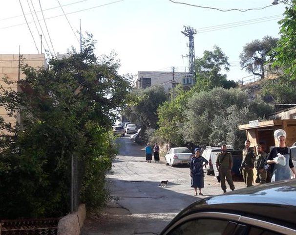 مستوطنون ينصبون محطة انتظار في تل الرميدة