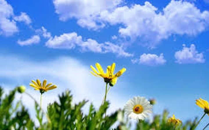 حالة الطقس: أجواء صافية ومعتدلة وارتفاع الحرارة عن معدلها العام بقليل