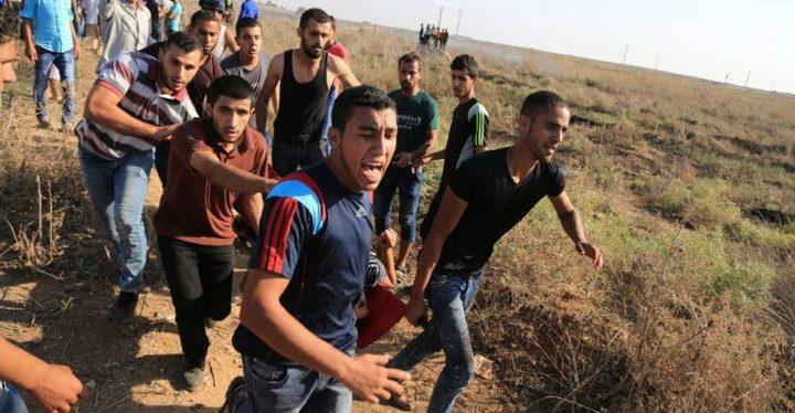 إصابة 4 شبان برصاص قوات الاحتلال شرق رفح