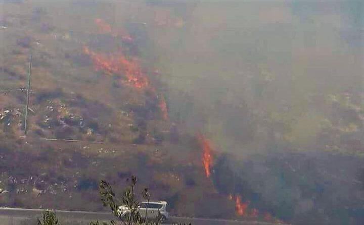 حريق كبير في أحراش السويطات بجنين