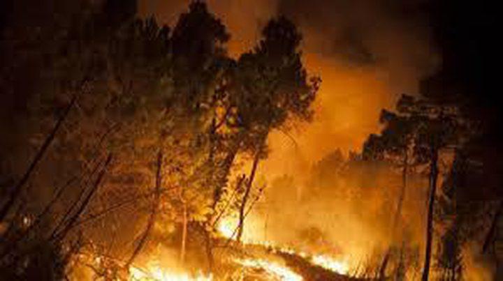 الدفاع المدني يخمد حريق طال 240 شجرة مثمرة