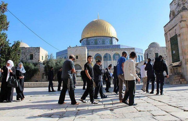 62 مستوطناً يقتحمون المسجد الأقصى