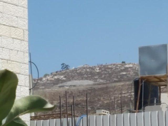 مستوطنون يهاجمون عصيرة القبلية (صور)