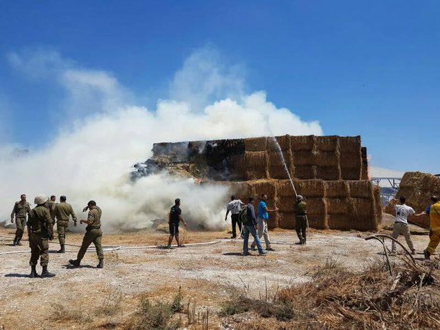 حريق كبير في ناحل عوز شرق غزة بفعل بالون حارق
