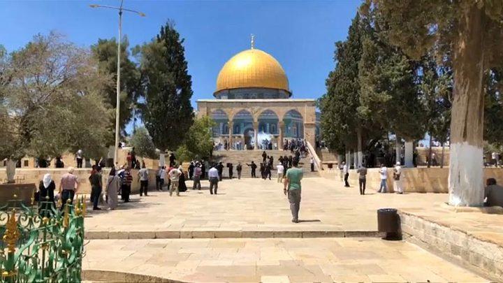 عكرمة صبري: إسرائيل خافت من المعتصمين ففتحت الأقصى