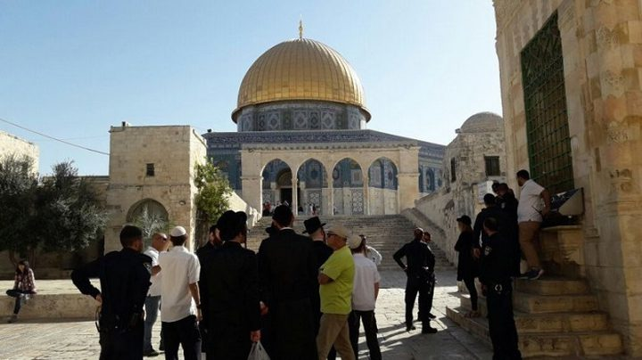 الاحتلال يبعد مقدسيتين عن المسجد الأقصى