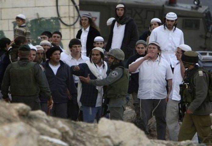 مستوطنون يعتدون على مواطنين في تل الرميدة