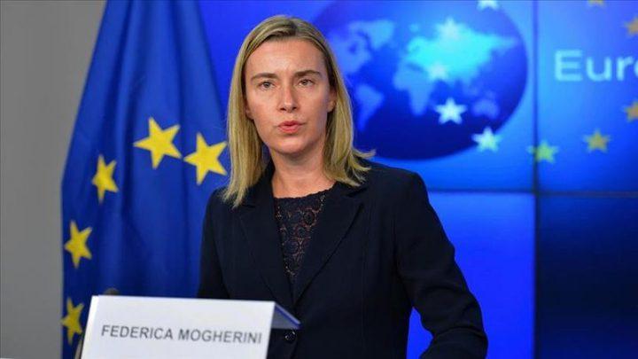 """مؤسسة حقوقية: رسالة """"موغريني"""" صفعة قوية للاحتلال"""