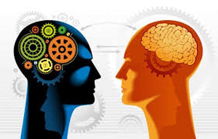 هل تزيد ألعاب الذكاء حقًا من معدل ذكائك؟