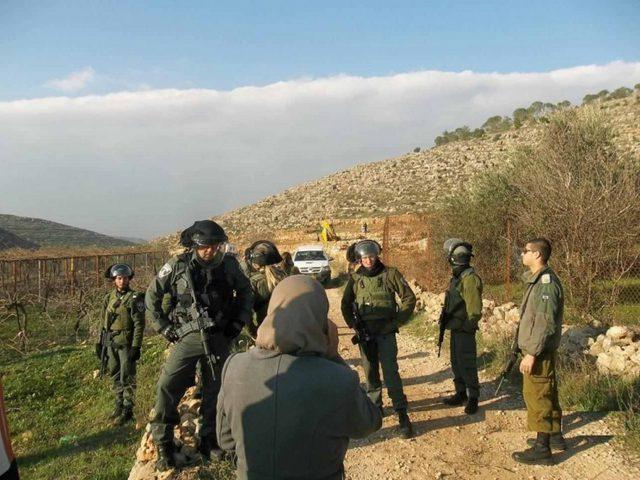 الاحتلال يستولي على 25 دونما من أراضي جماعين